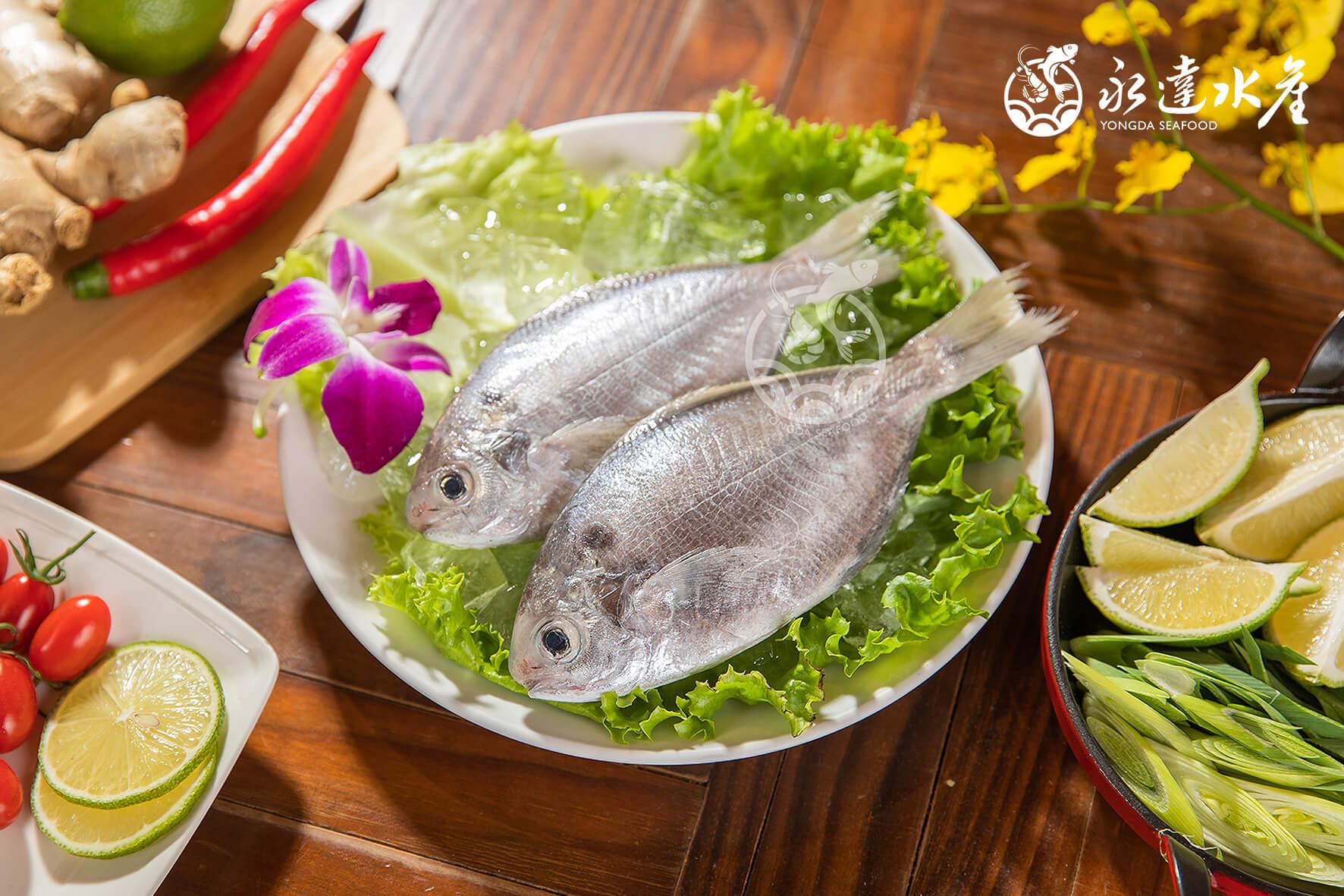 水產|海鮮|鮮凍野生肉魚|生肉魚|野生|魚肉|魚