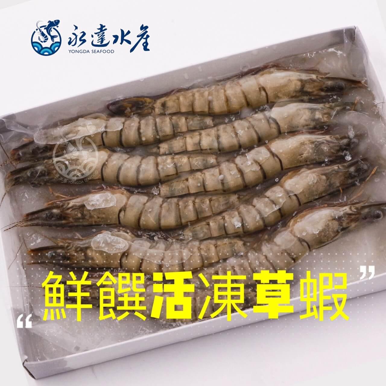 水產|海鮮|鮮饌活凍草蝦|草蝦|黑虎蝦|鬼蝦|蝦肉|蝦