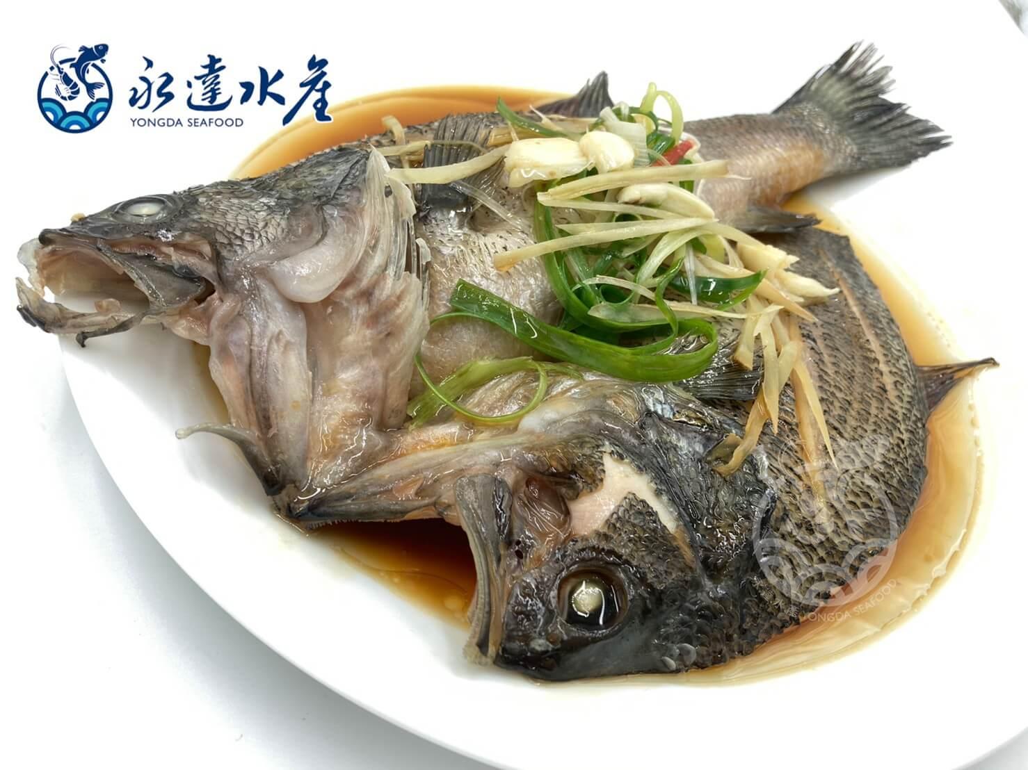 水產|海鮮|山泉鱸魚|鱸魚|花鱸|七星鱸|寨花|魚肉|魚
