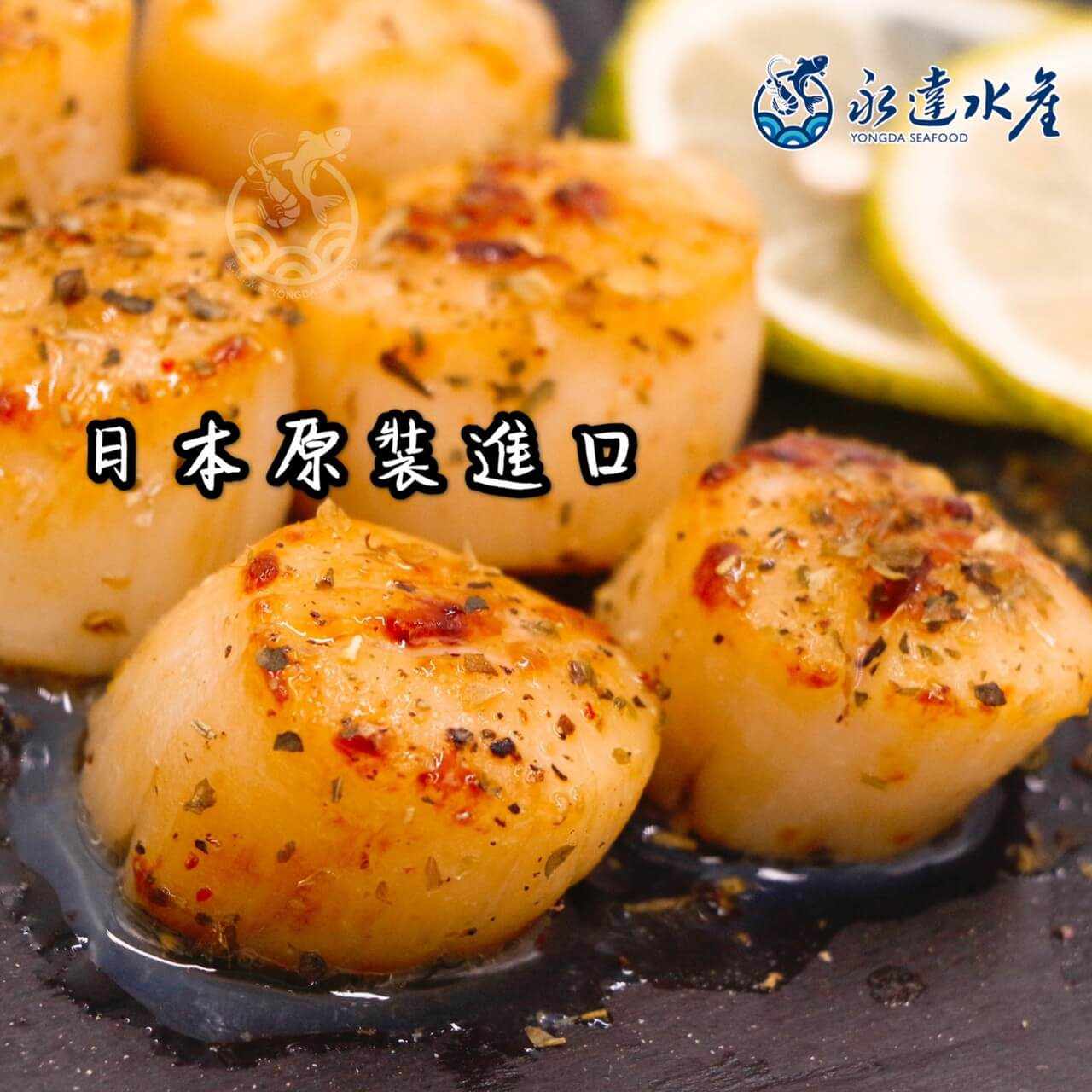水產|海鮮|日本原裝干貝|干貝|乾貝|甘貝|玉珧|元貝|珧柱|江珧柱|瑤柱|江瑤柱|乾瑤柱|帶子|貝肉|貝